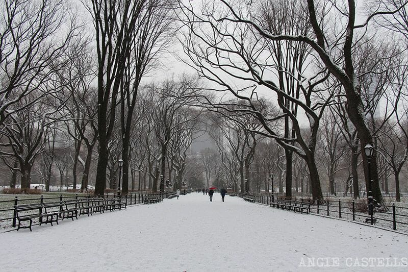 Central Park nevado The Mall