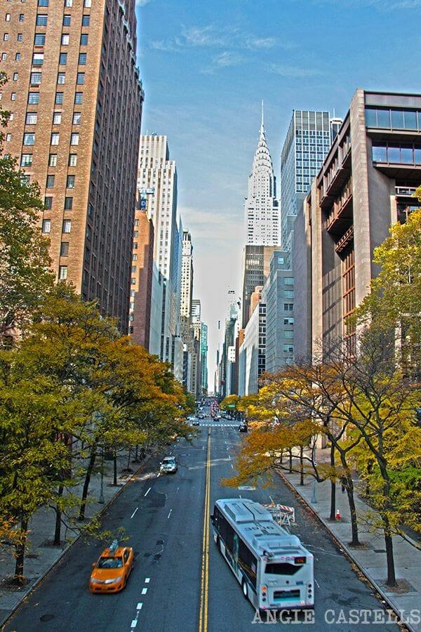 El bus en Nueva York