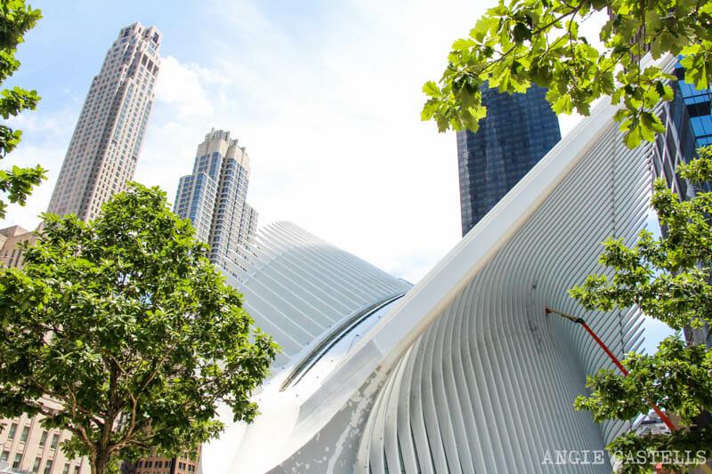 Guía del World Trade Center: el Oculus de Calatrava