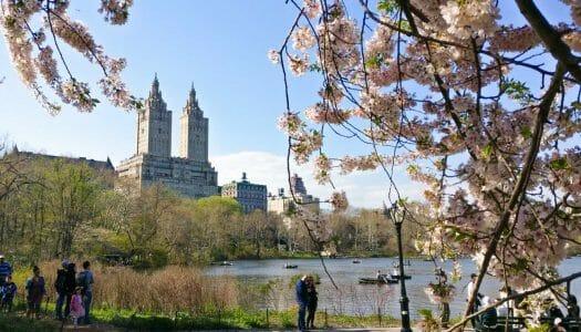 El mes de abril en Nueva York (2020)