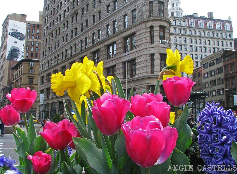 Qué hacer en mayo en Nueva York: el edificio Flatiron