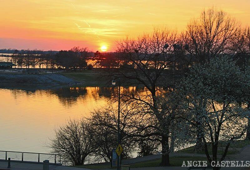 Guía de Memphis río Mississippi