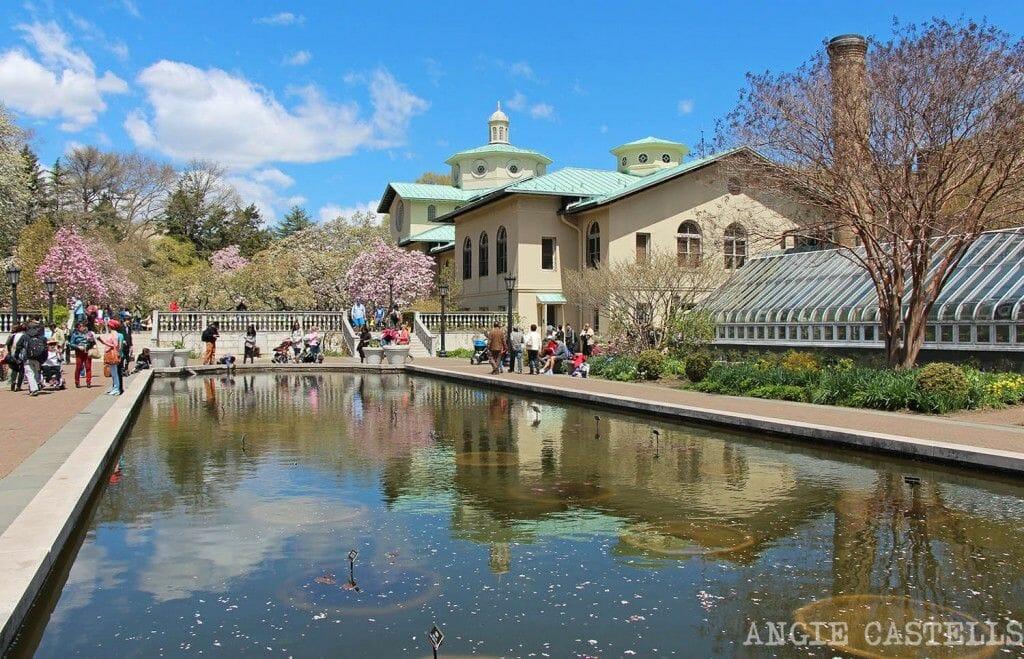 Visitar el Brooklyn Botanic Garden NY
