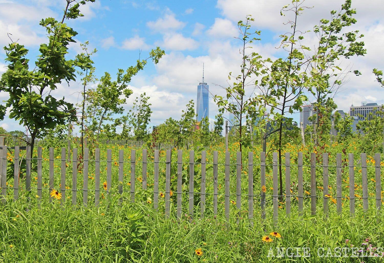 El mes de julio en Nueva York