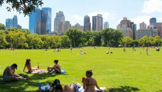 El mes de julio en Nueva York (2020)