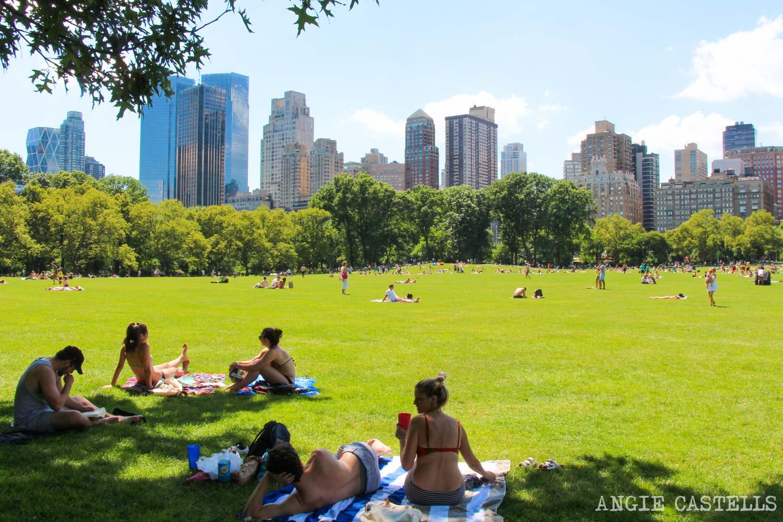 Qué hacer en julio en Nueva York. Central Park