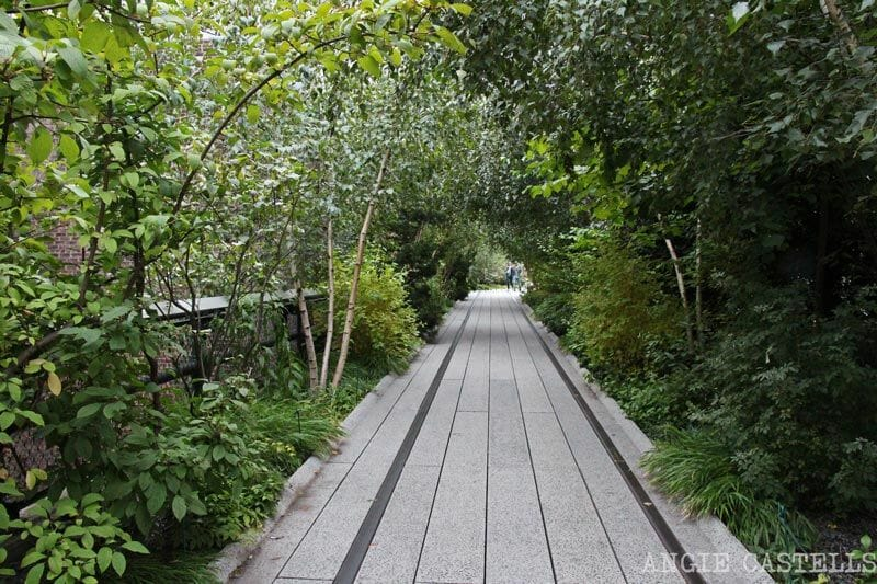 La-High-Line-de-Nueva-York-naturaleza