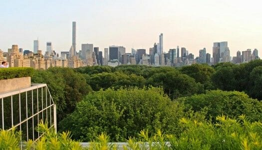 La terraza del Met, vistas preciosas de Manhattan