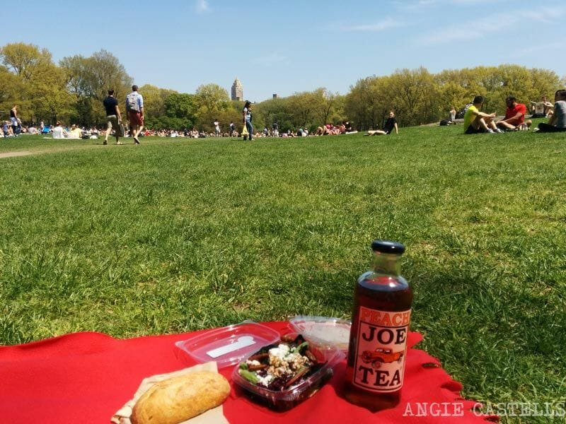 Picnic-en-Central-Park-Whole-Foods-Nueva-York