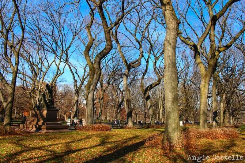El otoño en Nueva York Central Park arboles