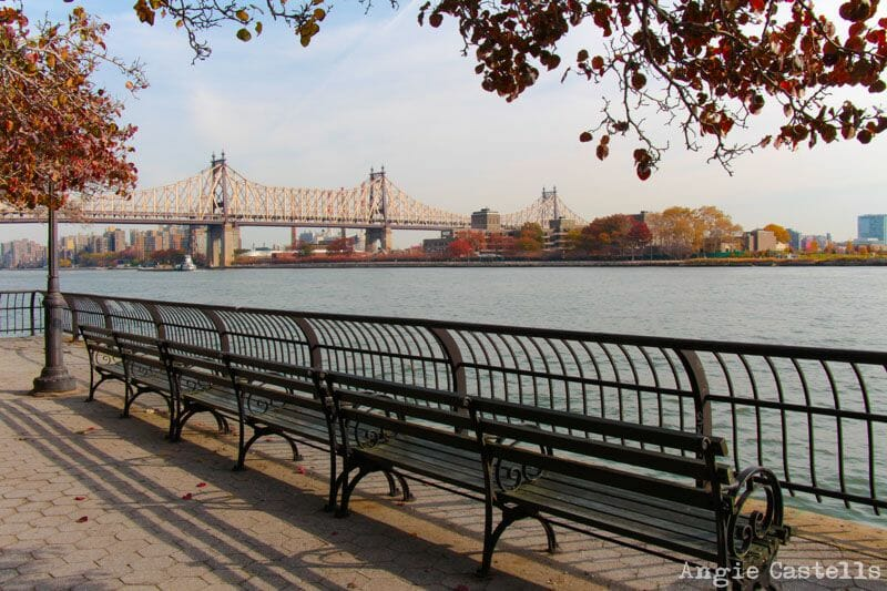 El otoño en Nueva York East River Queensboro Bridge-2
