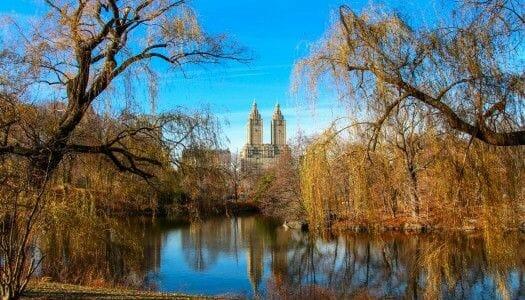 Guía completa del otoño en Nueva York