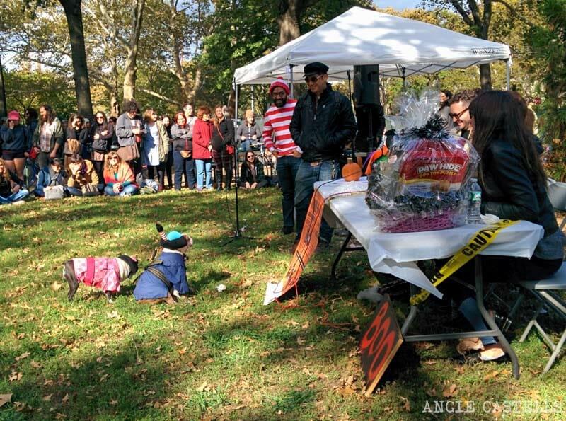 Halloween en Nueva York disfraces de perros-1