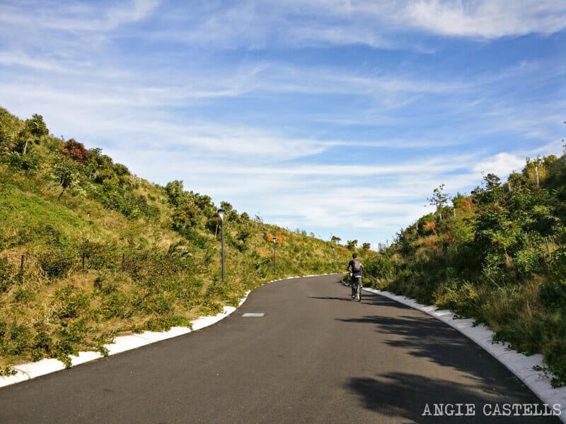 Qué hacer en Governors Island - Alquilar una bicicleta