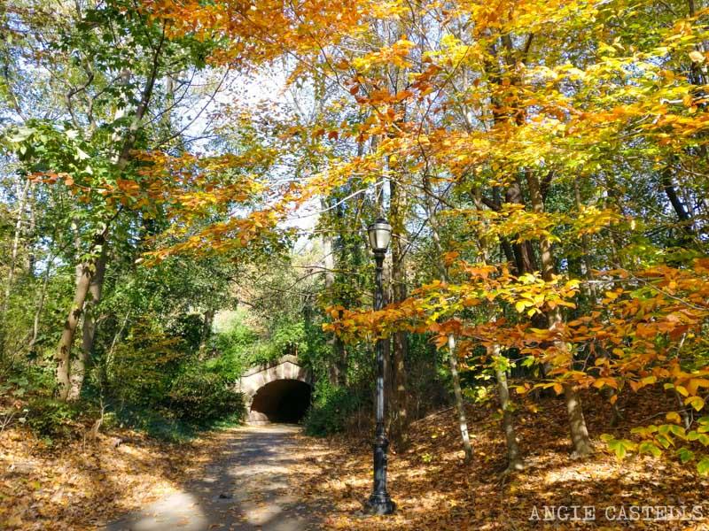 Qué hacer en otoño en Nueva York - Prospect Park