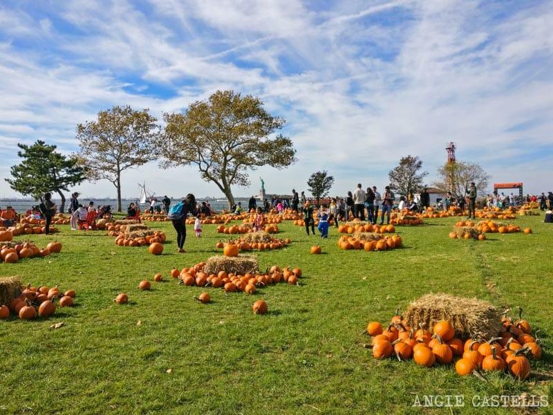 Qué hacer en otoño en Nueva York - Governors Island