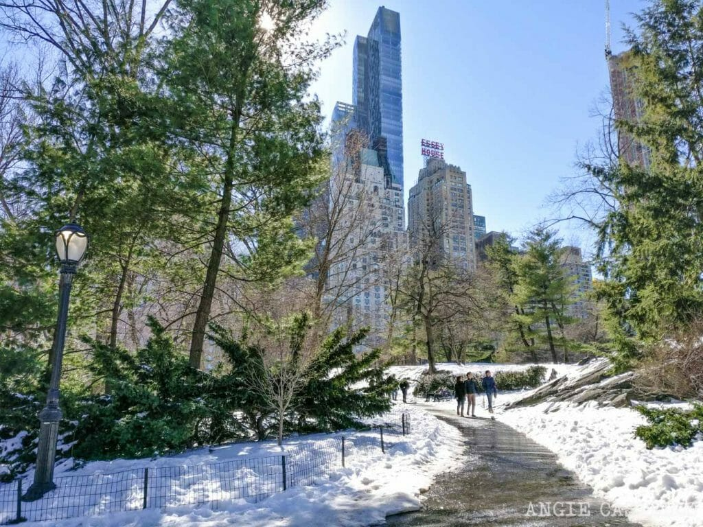Qué hacer en marzo en Nueva York: paseo por Central Park