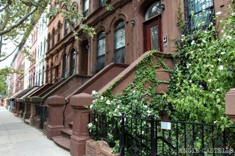 Las excursiones por Nueva York más famosas: tour de misa góspel en Harlem