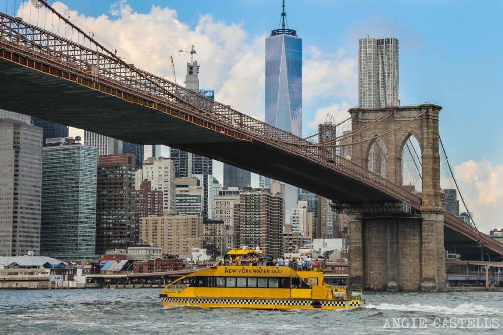 Excursiones Nueva York Tour Water Taxi rios Brooklyn Bridge