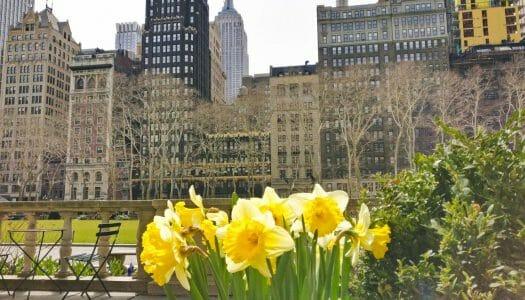 Guía completa de la primavera en Nueva York