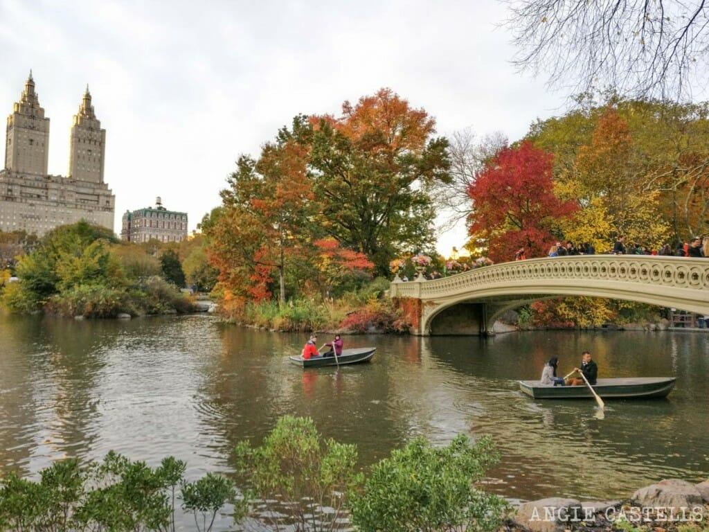 Noviembre en Nueva York Central Park
