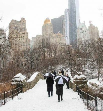 Que-hacer-febrero-Nueva-York-Central-Park-1500