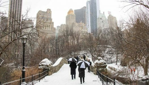 El mes de febrero en Nueva York (2020)