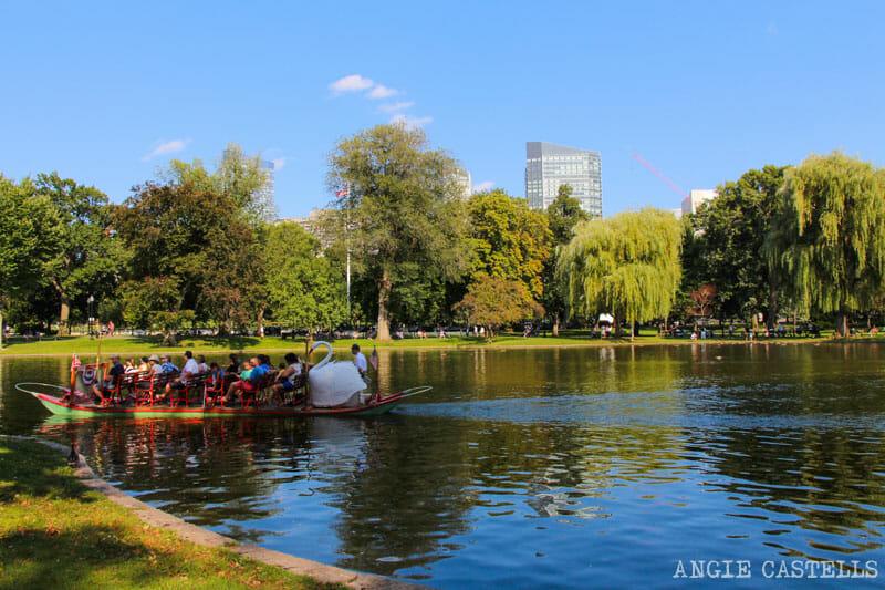 Qué ver en Boston en una excursión desde Nueva York - Boston Public Gardens
