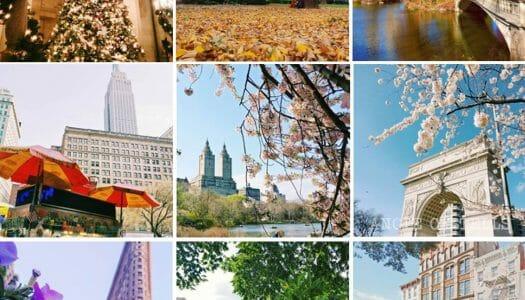 Nueva York en 2018: 12 fotos para doce meses