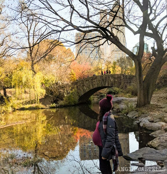 Consejos para viajar a Nueva York embarazada - Central Park