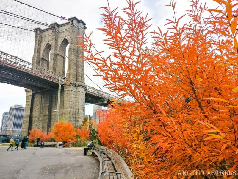 El puente de Brooklyn (Brooklyn Bridge) con los colores del otoño