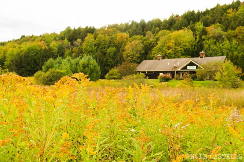 Ruta por Vermont en otoño para ver el fall foliage