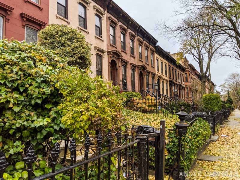 cosas que aprender de la vida en Nueva York - Otoño en Brooklyn Bedstuy