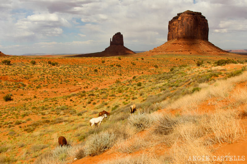 Visitar Monument Valley en coche - El Valley Drive