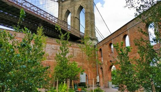 Guía de Dumbo (Brooklyn) + 15 cosas que hacer