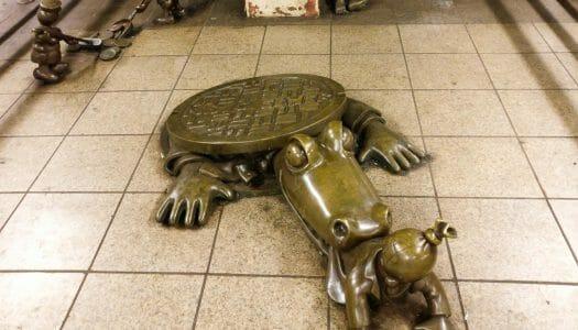 ¿Hay caimanes en las alcantarillas de Nueva York?