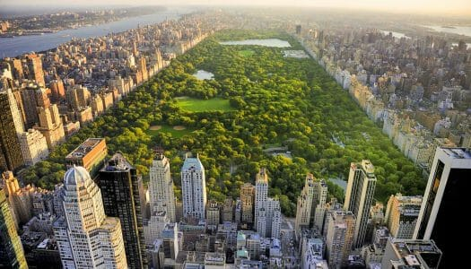 Guía de Central Park y ruta por el parque
