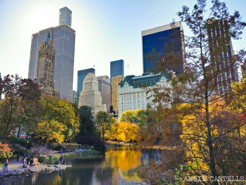 Qué hacer en Central Park - El parque en otoño