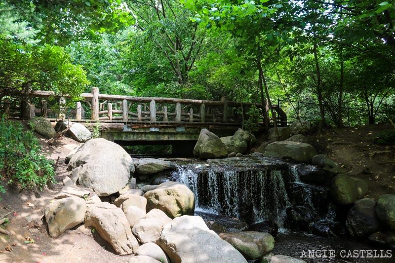 Qué ver en Brooklyn - El parque Prospect Park