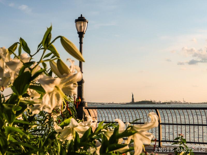 Guía del Distrito Financiero de Nueva York - La Estatua de la Libertad