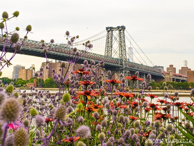 Los puentes de Nueva York - El puente de Williamsburg