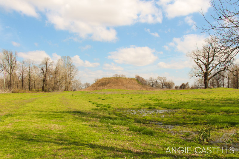 Winterville Mounds, monticulos indios de MIssissippi