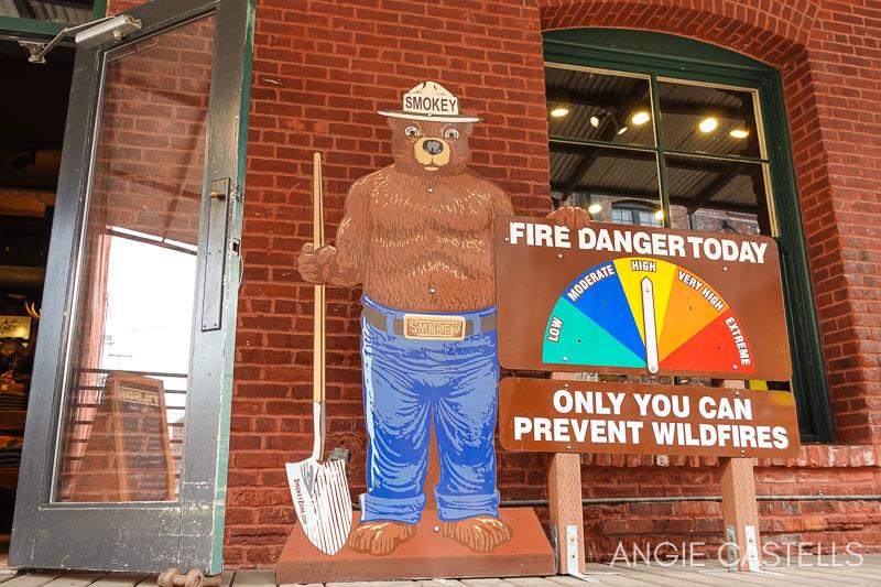 Incendios en Oregon - Oso Smokey